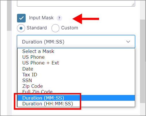 """Highlighting the """"Duration (MM:SS)"""" and """"Duration (HH:MM:SS)"""" options in the Input Mask dropdown menu"""