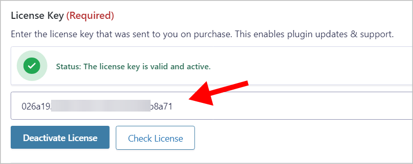 The GravityView license key input box with a license key inside